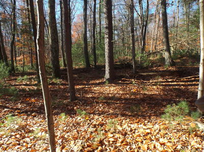 Stroudsburg Residential Lots & Land For Sale: Cricket Lane