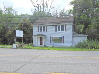 Tannersville Commercial For Sale: 3110 Route 611