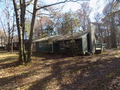 Albrightsville Single Family Home For Sale: 106 N Shore Dr