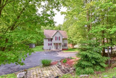 Albrightsville Single Family Home For Sale: 6 Basswood Court
