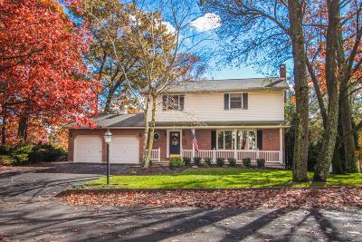 Lehigh County, Northampton County Single Family Home For Sale: 500 E Laurel Ave