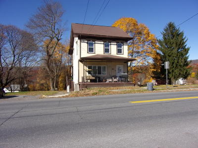 Jim Thorpe Multi Family Home For Sale: 201 North Street