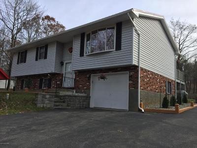 Albrightsville Single Family Home For Sale: 158 Winding Way
