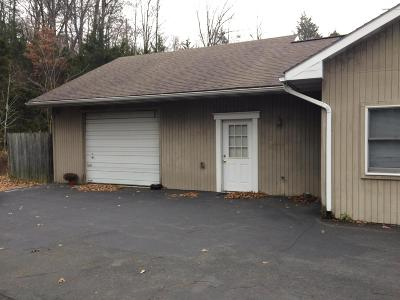 Stroudsburg Commercial For Sale: 6515 Route 209, Garage