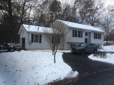 East Stroudsburg Single Family Home For Sale: 141 Carol Rd
