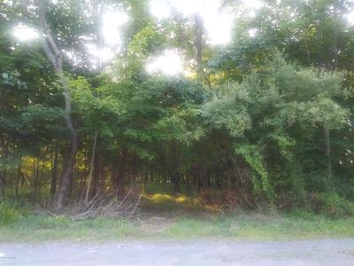 East Stroudsburg Residential Lots & Land For Sale: Wilson Ave