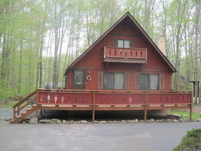 Pocono Lake Single Family Home For Sale: 207 Eyota Dr