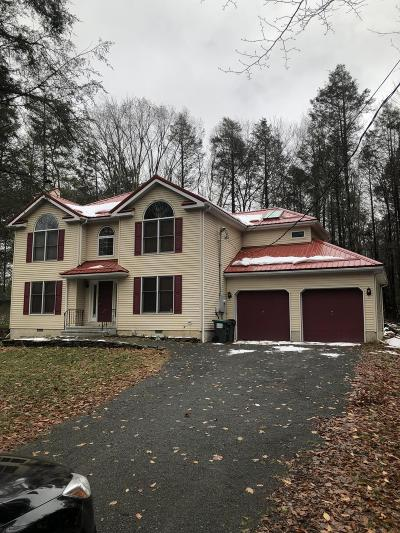 Pike County Single Family Home For Sale: 131 Hillside Dr