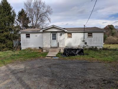 Kunkletown Single Family Home For Sale: 1042 Hideaway Hill Rd