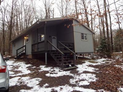 Pocono Lake Single Family Home For Sale: 309 Selig Rd