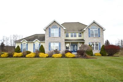 Brodheadsville Single Family Home For Sale: 2192 Route 115