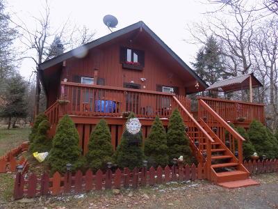 Albrightsville Single Family Home For Sale: 128 Caddo Ter Terrace