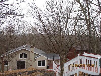 Bushkill PA Single Family Home For Sale: $89,927