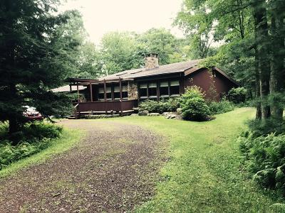 Lake Harmony Single Family Home For Sale: 223 Moseywood Rd