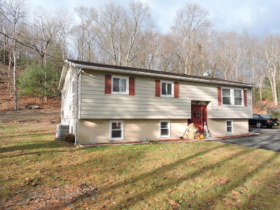 Stroudsburg Single Family Home For Sale: 219 Becca Lane