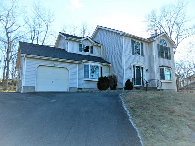 Bartonsville, Delaware Water Gap, East Stroudsburg, Marshalls Creek, Shawnee On Delaware, Stroudsburg, Tannersville Single Family Home For Sale: 6248 Blue Beech Dr