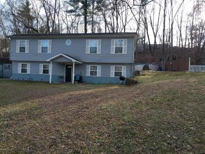 Stroudsburg Single Family Home For Sale: 519 Mac Ln