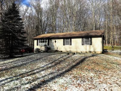 White Haven PA Single Family Home For Sale: $119,900