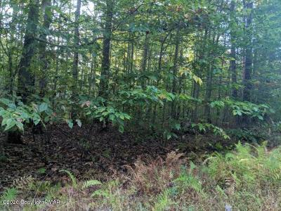 Cresco Residential Lots & Land For Sale: 3 Mill Creek Rd