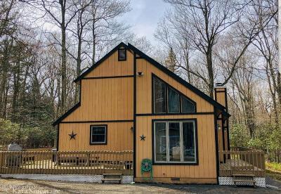 Lake Harmony Single Family Home For Sale: 330 Moseywood Rd