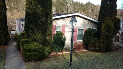 Saylorsburg Single Family Home For Sale: 1232 Blue Mountain Cir