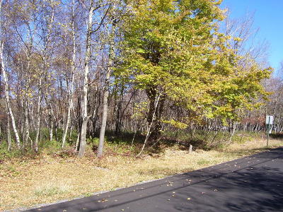 Blakeslee Residential Lots & Land For Sale: 62 Buck Hill Rd