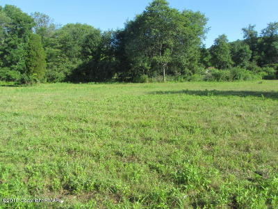 Saylorsburg Residential Lots & Land For Sale: T 382 Ross Road # 1
