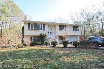 Saylorsburg Single Family Home For Sale: 2157 White Pine Dr