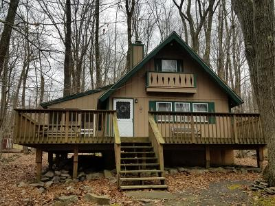 Pocono Lake Single Family Home For Sale: 124 Netcong Cir