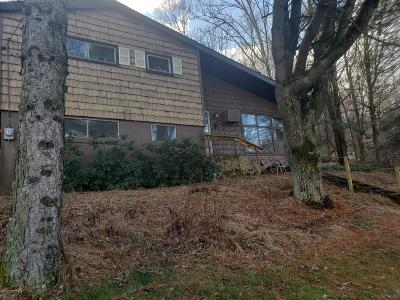 Saylorsburg Single Family Home For Sale: 2544 Upper Smith Gap Rd