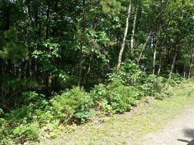 Long Pond Residential Lots & Land For Sale: #7222 Saw Mill Rd
