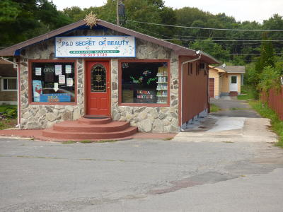 East Stroudsburg Commercial For Sale: 5239 Milford Rd