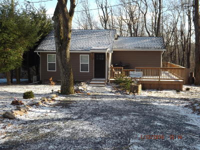 Mount Pocono Rental For Rent: 41 Reeder St