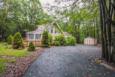 Albrightsville Single Family Home For Sale: 324 Tower Rd