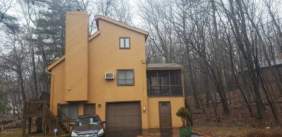East Stroudsburg Single Family Home For Sale: 132 Noble Ln