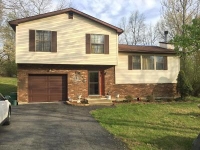 East Stroudsburg Single Family Home For Sale: 5 Teak Ln