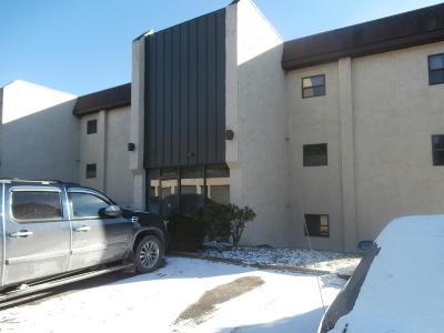 Mount Pocono Single Family Home For Sale: 130 Foxfire Dr #204