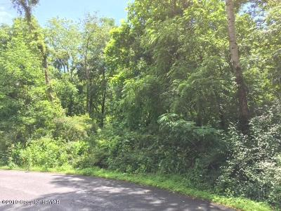 Stroudsburg Residential Lots & Land For Sale: Constitutional Dr