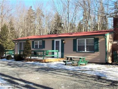 Pocono Lake Single Family Home For Sale: 156 Wagner Way