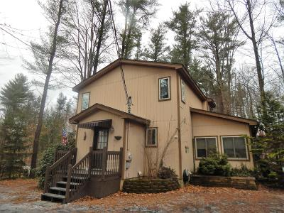 Pocono Lake Single Family Home For Sale: 116 Nakora Dr