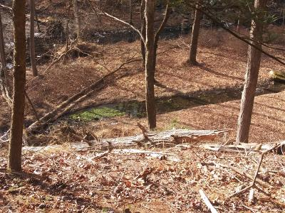 East Stroudsburg Residential Lots & Land For Sale: W Of T 508