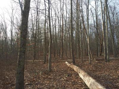 East Stroudsburg Residential Lots & Land For Sale: #1 Yellow Birch Dr