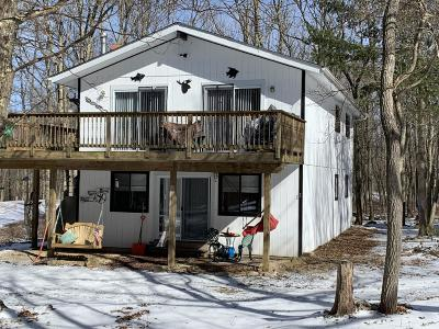 Towamensing Trails Single Family Home For Sale: 46 Seeger Path
