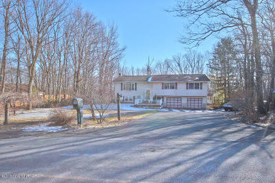 Stroudsburg Single Family Home For Sale: 224 Tree Top Ter