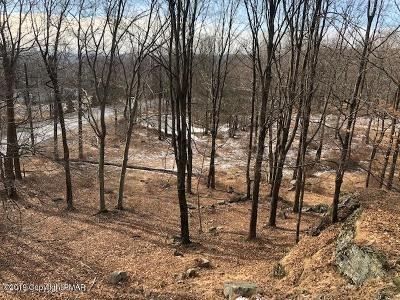 Monroe County Residential Lots & Land For Sale: Pa Rt 447