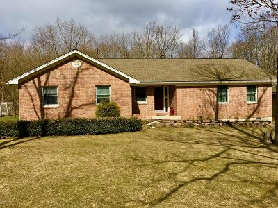 Albrightsville Single Family Home For Sale: 490 Kilmer Trail