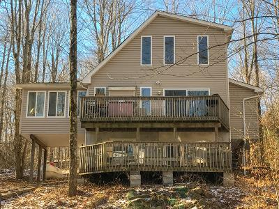 Pocono Lake Single Family Home For Sale: 1113 Arrowhead Dr