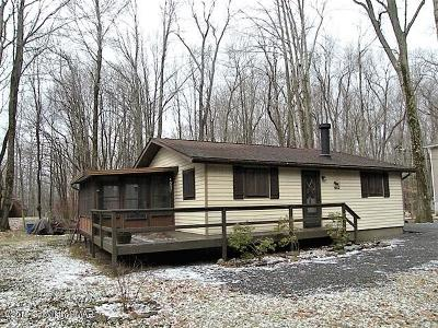 Pocono Lake Single Family Home For Sale: 127 Ridge Road