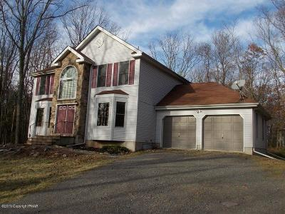 Jim Thorpe Single Family Home For Sale: 130 Broad Mountain View Dr