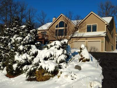 Tannersville Single Family Home For Sale: 2239 Camelback Dr